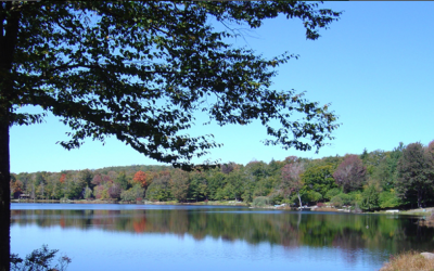 3 Lots for Sale Poconos, SELLER PAYING CLOSING COSTS