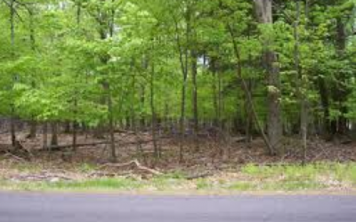 3 Lots for sale, Pocono's Seller Paying Costs