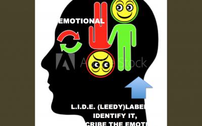 LisaOnTheGo Blog Emotional
