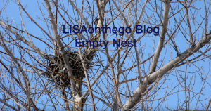 LisaOnTheGo Empty Nest