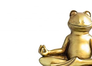 frog meditating in lotus pose. Body, mind and soul balance, abundance, money concept. Isolated on white. Copy space